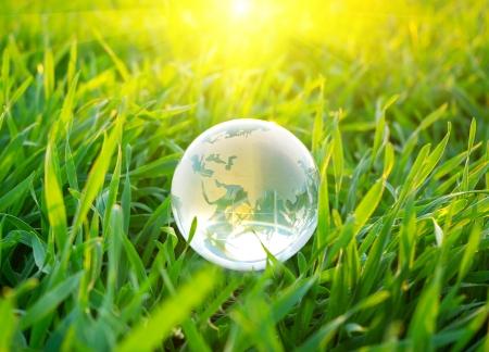 Earth globe in the grass photo