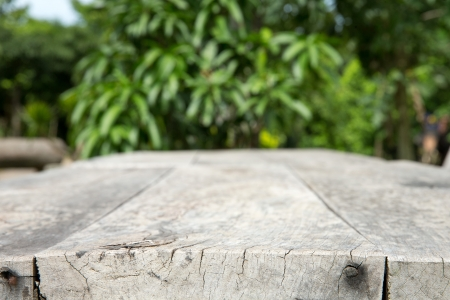 empty table in garden photo