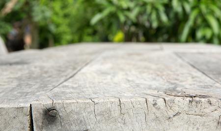 empty table in garden photo