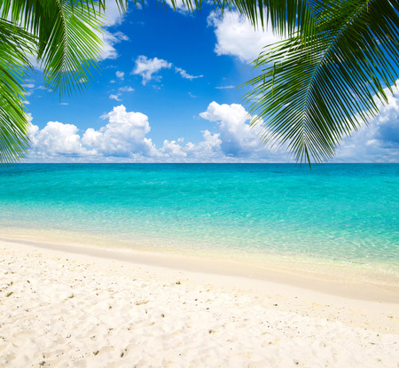 beautiful beach and tropical sea Stock Photo