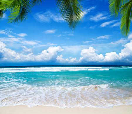 Welkom geschreven in een tropisch strand Stockfoto