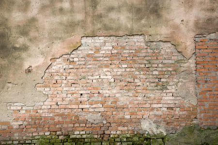 brick wall for background or texture