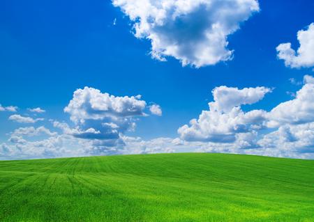 vert et bleu ciel