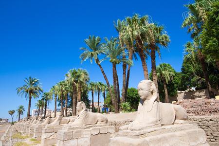 luxor: Africa, Egypt, Luxor, Amun Temple of Luxor. Stock Photo