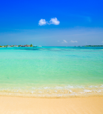 blue lagoon: tropical beach in Maldives with few palm trees and blue lagoon Archivio Fotografico