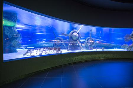 public aquarium: Sunken plane under water in Antalya aquarium of Turkey
