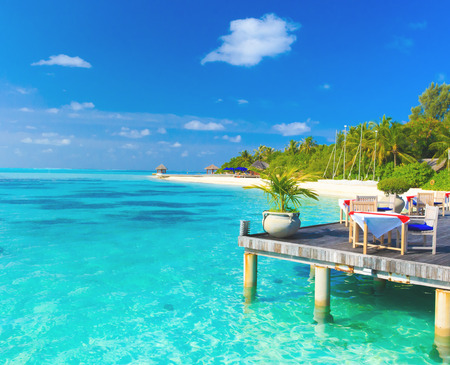island paradise: tropical beach in Maldives with few palm trees and blue lagoon Editorial