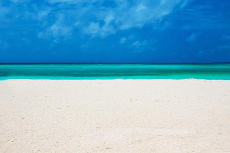 plage tropicale aux Maldives avec quelques palmiers et bleu lagon