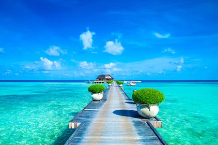white sand beach: White tropical beach in Maldives