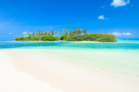 tropical beach in Maldives with few palm trees and blue lagoon Archivio Fotografico