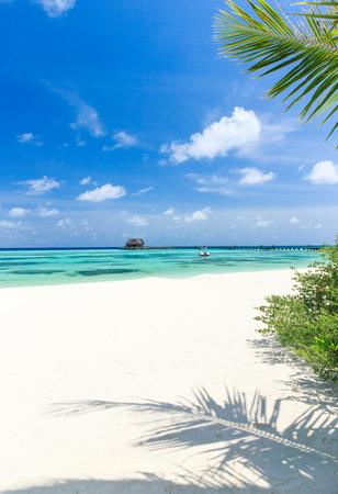 island paradise: beach and beautiful tropical sea