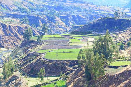 andes: landscape in Andes, Peru.