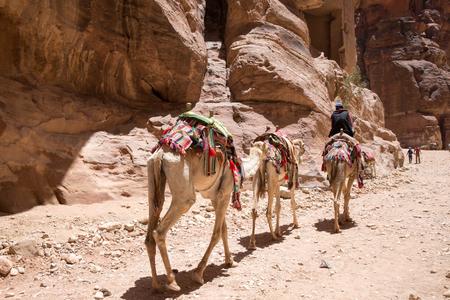 cavern: PETRA, JORDAN - APRIL 12, 2014: Unidentified people in front of Petra, Jordan.