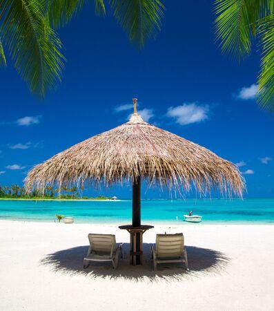 Mer aux Maldives. Plage tropicale aux Maldives avec la lagune bleue