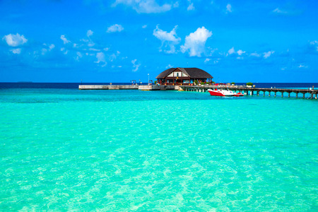 tropical beach in Maldives with few palm trees and blue