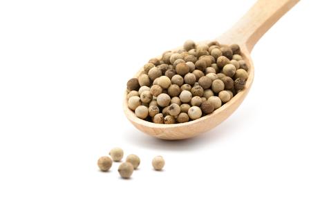 peppercorn: White pepper grains isolated on white background