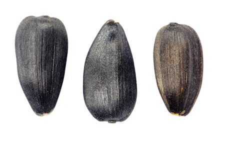 sunflower seeds isolated on white Stock Photo