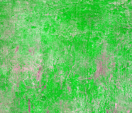 Green wall for texture or background