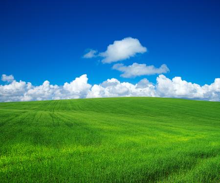green field with blue heaven