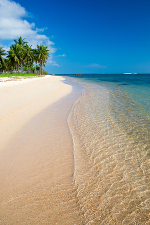 tropical beach in Sri Lanka . Summer holiday and vacation concept for tourism.