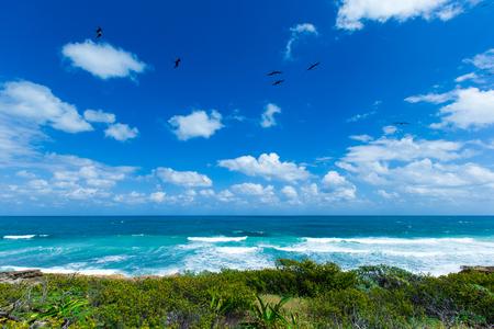 Sea waves crashing over rocks on wild stone beach in Mexico. Tropical sea relax Stock Photo