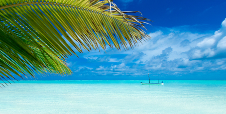 tropical beach in Maldives Stock Photo