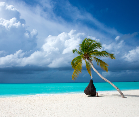 tropical Maldives island with white sandy beach and sea Stock Photo - 106359600