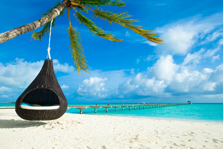 tropical beach in Maldives with few palm trees and blue lagoon Stock Photo