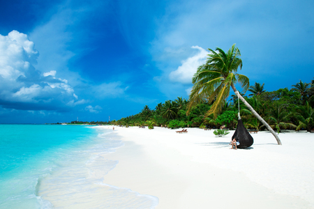 tropical beach in Maldives with few palm trees