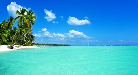 Beach and beautiful tropical sea. tropical landscapes