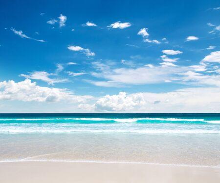tropical beach in Maldives Фото со стока
