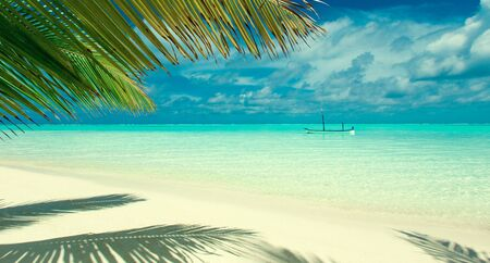 tropical beach in Maldives with few palm trees and blue lagoon Фото со стока
