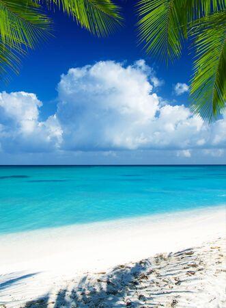 Strand und tropisches Meer. tropische Insel