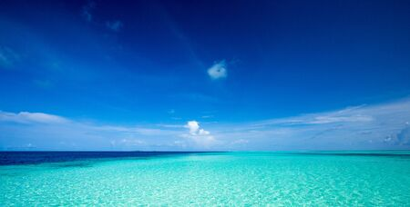 tropical beach in Maldives with few palm trees and blue beach