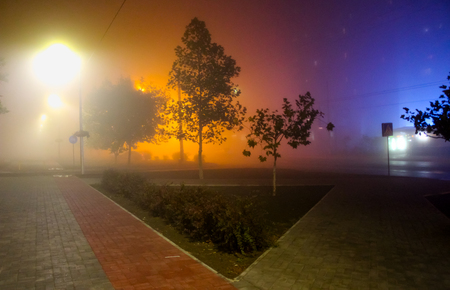 Alley with ghosts - foggy evening in the park Stock Photo