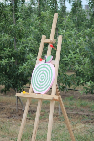 Playing darts on an apple-shaped dart board outdoor