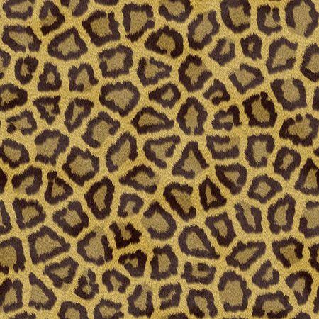 Leopard Texture photo