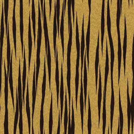 Tiger Texture photo