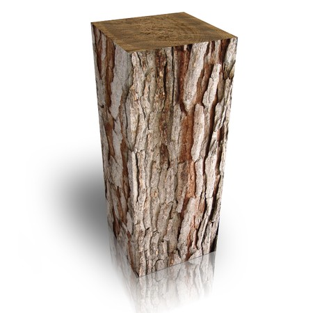 bucket of money: Square trunk of tree Stock Photo