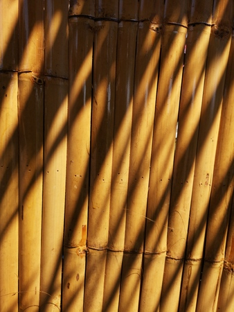 shadow on bamboo texture material background pattern line wood nature