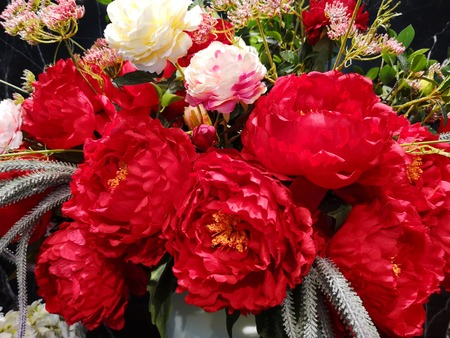 Red flower beauty bouquet background