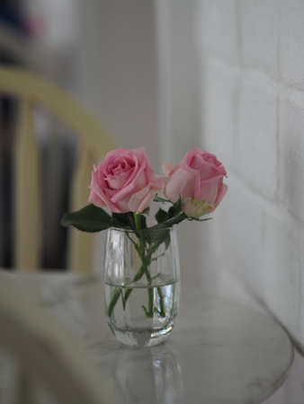 pink rose romance beautiful Flower symbol Love in clear glass on marble table