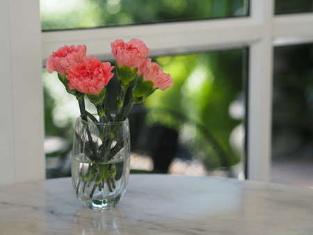 pink Carnation flower in a glass of water on marble table