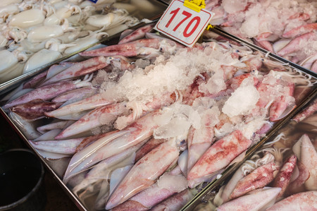 raw squid sell in fish market photo