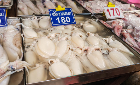raw seafood sell in fresh market photo