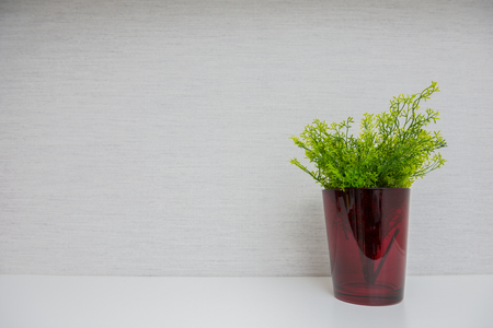 storage box: Plant in red glass on light background.Home accessories. Stock Photo