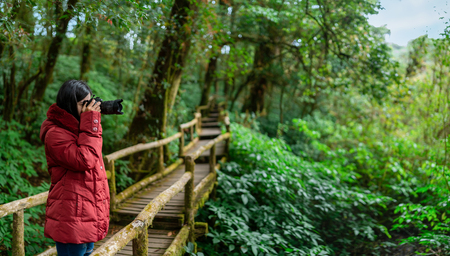 Professional Nature Photographer taking photo on morning mountain forest