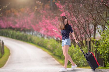 Woman traveler with suitcase in the cherry blossom park  , travel , asia