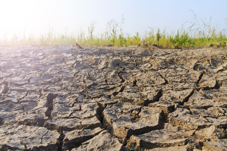 dried up: lake that dried up,global warming, drought, crackwith sunny hotspot
