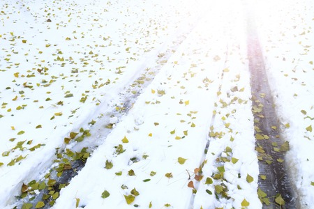 big slick: protectors of cars on snow and fallen green leaves with sunny hotspot,Car tracks, winter road Stock Photo